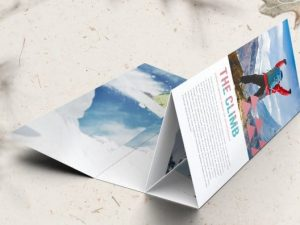roll fold brochure adventure