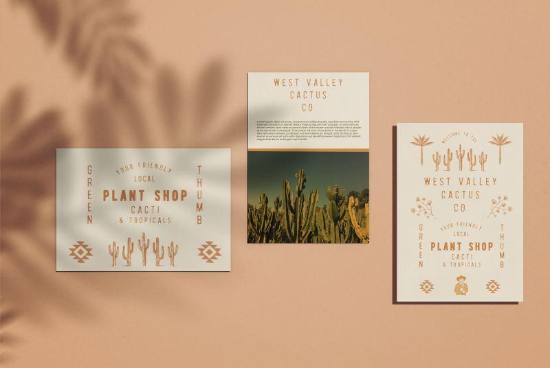 custom postcards shop apricot